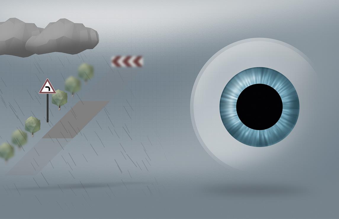 Verres à usage quotidien, optimisés pour la conduite   ZEISS Belgique d1c700ad29cc